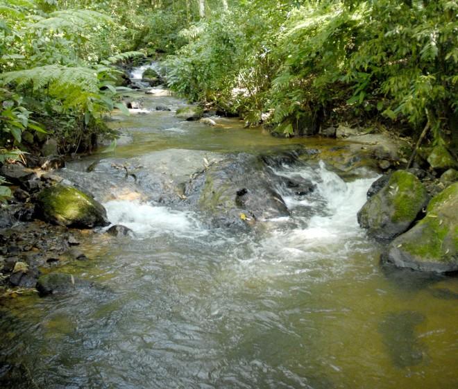 Jundiaí tem águas límpidas, como na Serra do Japi e zona rural